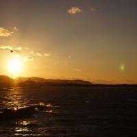 太陽を撮ったら不思議な緑の光が写った?それは「ゴースト」だ!