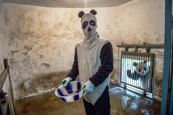 Pandas08