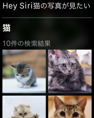 アップルウォッチのSiriを使った画像検索例