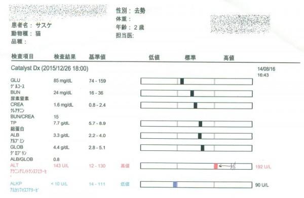 サスケ、2015年末の血液検査結果