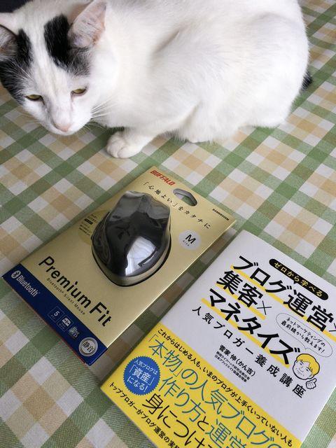猫(サスケ)は商品ではありません