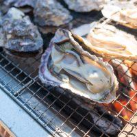 舎人公園にて牡蠣BBQを頂く(2017年1月21日の写真日記)